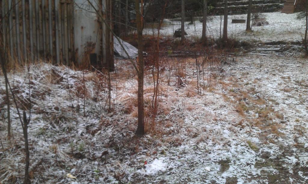 Näin se talvi vihdoin saapuu Vantaallekin.