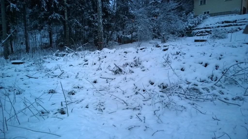 Oksat ja risut läjässä, tosin lumen alla.