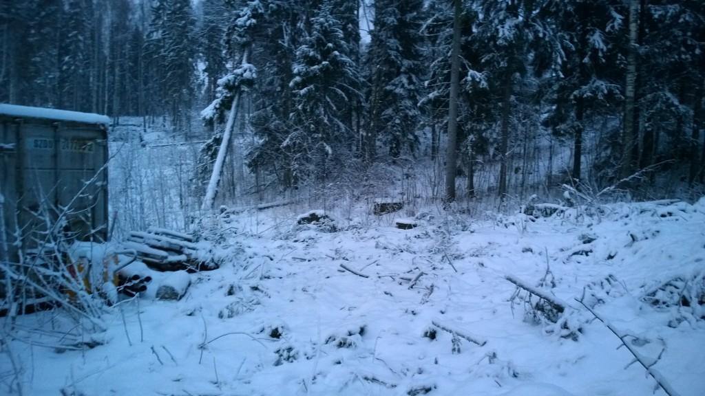 Tästä suunnasta näkeekin että on puita lähtenyt luoteisrajalta.